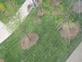 龙江 原永发敬老院菜园, 厂房 7000平米