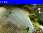 汗蒸开辟了中国市场的高级养生时代