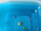 九成新充气游泳池
