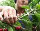 劳务派遣 新西兰保签 种植工 采摘工 养殖年30万