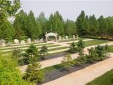 北京陵园都以什么形式入葬