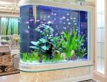 鱼缸展 生态鱼缸价格