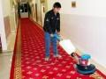 长宁区专业保洁清洗公司 地毯清洗 地毯消毒 沙发清洗