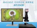 東莞市瑞顯光學廠家直供HDMI高清拍照測量4K顯微鏡