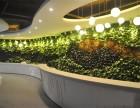 铜仁植物墙公司凯里室内绿化装饰墙壁绿化