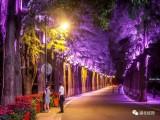 成都城市照明 灯饰安装 亮化 楼宇高空 景观照明 市政工程