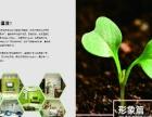 佳士利纳米涂料科技有限公加盟 纳米涂料硅藻泥加盟