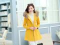 韩版修身冬季呢子外套批发最低价中长款女装冬装加厚毛呢大衣批发