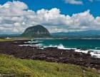 北纬三十三度拥抱济州岛的的春天