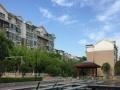 新城区房源出租 森林半岛 九天庄园 单身公寓 三室