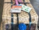 广州佛山宠物托运 代办三证 提供航空专用箱