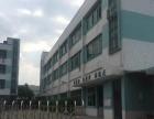 东莞市横沥镇独门独院厂房招租