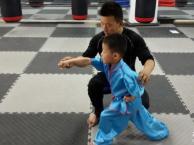 和平区少儿武术培训暑假班-天津南门外大街暑假少儿学习班