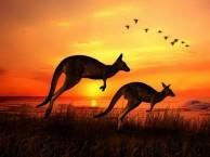 移民澳洲有什么好处