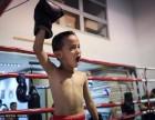 打泰拳MMA防身培训班丰台区附近专业少儿 学生 成人散打