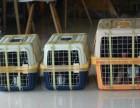 吉祥十宠物托运价格表宠物托运要多少钱湘潭