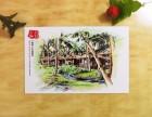海南明信片 海南手绘地图批发零售 手绘设计