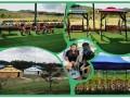 深圳泥巴园农场针对公司团队出游量身打造休闲旅游农家乐
