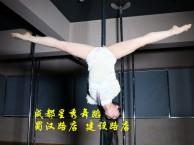 金牛区星秀舞蹈钢管舞培训 舞蹈培训零基础学钢管舞