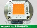 LED50w集成COB灯珠 高端的品质