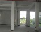 标准园区厂房仓库800平 层高4.5米 场地大