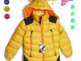 外贸原单情侣棉衣 冬装新款运动休闲女纯色立领男装外套棉衣批发