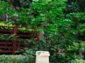 南阳糕点学校 专业烘焙培训机构