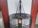 精致漂亮的漳州画眉鸟笼