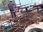 昌平区小汤山设备起重搬运公司专业设备装卸上楼下坑服务