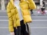 新款冬季女士棉衣免费铺货无条件包退换