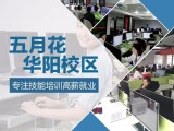 成都双流华阳片区专业电脑培训会计培训学历提升培训