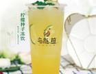 广州饮品加盟店,乌龙煎黑龙茶消费者青睐