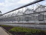想建连栋温室就到万和温室|连栋育苗温室建设