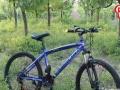 [朋友信得过]自行车全部最低价抢,抢,抢,抢到即赚