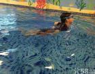 大连儿童游泳_情人节贝贝鲸德国专业游泳特惠8.7折