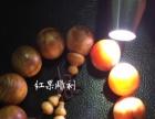 琥珀木自然油松钉手串,批发零售