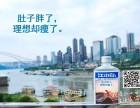 上海西康路学车 2个月拿证 车接车送