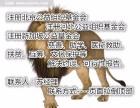 转让北京民办非的社工事务所多少钱