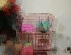 全新三层猫笼粉色转让