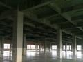 空港3200平独栋产权厂房 配套齐全可长租