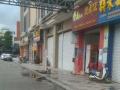 隆鑫广场商业街独立商铺