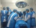 深圳微,整形手术培训 深圳微,整形技术培训班微,整形注射学习