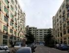 福永塘尾新出楼上整层2500平米豪华装修厂房
