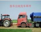 辽宁辽阳出售公园机关学校别墅耐踩好管理便宜质量草坪
