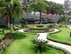承接绿化工程绿化养护植物租摆植物墙草坪草花假山鱼池防腐木花架