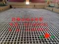 南阳舞台木地板,运动专业实木地板,胜枫专业安装