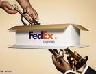 广州FEDEX国际快递上门取件电话,FEDEX国际空运