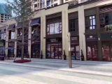 金科城地铁口金铺,层高六米,买一得二,可帮租可自营
