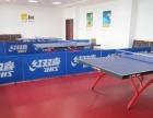 乒乓球台台球桌篮球架塑胶地板羽毛球柱训练器康乐专卖