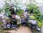 广州番禺汇景堂水族配套出售水草缸 水陆缸 雨淋缸 鱼池制作